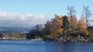 Det er høst og årets siste container fra Hjelpemiddelfondet sendes fra Oslo havn